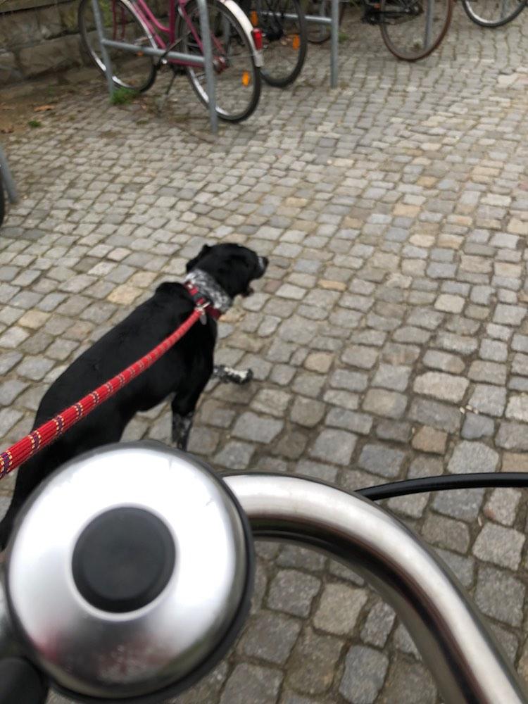 T-biking