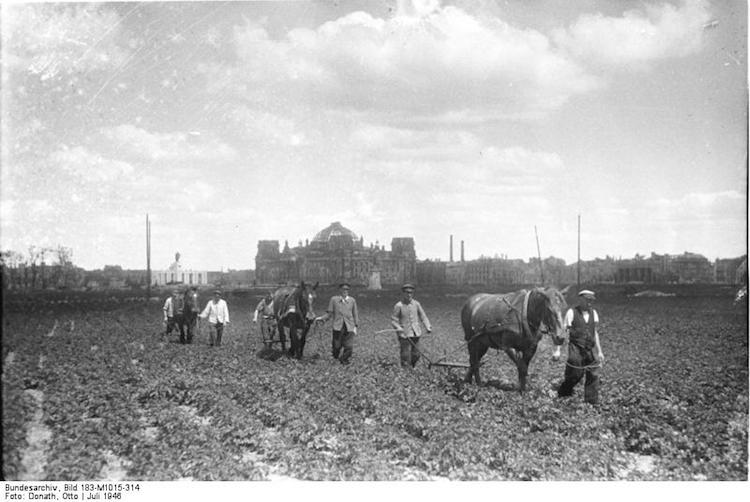 Bundesarchiv_Bild_183-M1015-314-_Berlin-_baumloser_Tiergarten-1